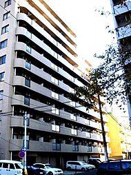 神奈川県横浜市南区真金町1丁目の賃貸マンションの外観
