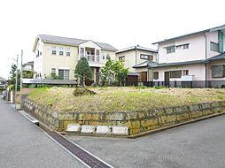 佐倉市新臼井田