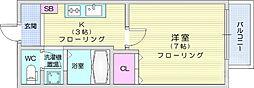 キャラウェイワカバ 1階1Kの間取り