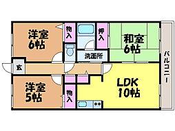 愛媛県松山市越智1丁目の賃貸マンションの間取り