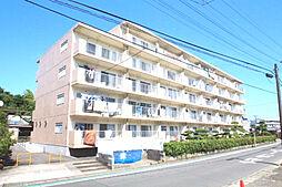 神奈川県海老名市浜田町の賃貸マンションの外観