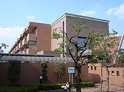 埼玉県所沢市花園1丁目の賃貸マンションの外観