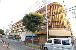 シャトー松原B棟[5階]の外観