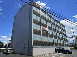 都市ガスRacoonD3〜ラクーンディースリー〜[1階]の外観