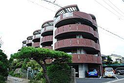 Ecoregalo(エコレガーロ)[1階]の外観