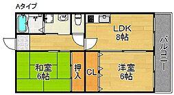 メゾン住之江[305号室]の間取り