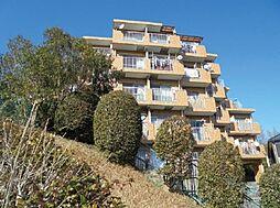 神奈川県横浜市港南区下永谷5丁目の賃貸マンションの外観