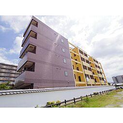 奈良県大和郡山市材木町の賃貸マンションの外観