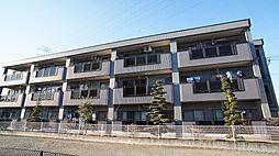 埼玉県川口市大字新堀の賃貸マンションの外観