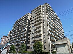 大阪府八尾市安中町3丁目の賃貸マンションの外観
