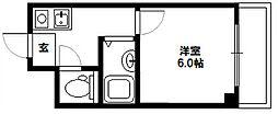 L&CスターハイツNo6[203号室]の間取り
