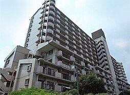 墨田区横川5丁目