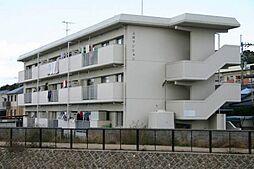 愛媛県松山市南江戸4丁目の賃貸マンションの外観