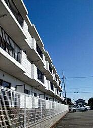 サンシャイン小沢渡[3階]の外観