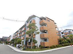 藤沢台第1住宅301棟[3階]の外観