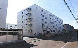 札幌市白石区平和通2丁目北