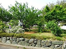 周辺環境:八幡通り公園