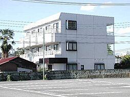 栃木県宇都宮市戸祭元町の賃貸マンションの外観