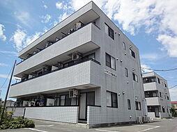 栃木県栃木市本町の賃貸マンションの外観