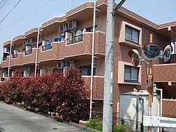 静岡県富士宮市野中の賃貸マンションの外観