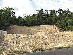 南側幅員約4..9m公道に約15m接道ありお車の駐車もしやすいです