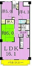 千葉県松戸市八ケ崎2丁目の賃貸マンションの間取り