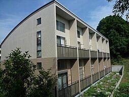 サンヴィアーレA[208号室]の外観