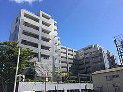 新潟県新潟市中央区水島町の賃貸マンションの外観