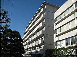 テルツォ南新在家[505号室]の外観
