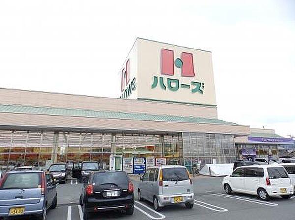 ハローズ新涯店(972m)