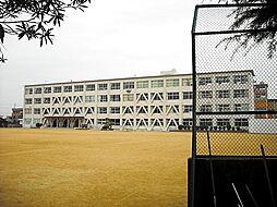 犬山市立羽黒小学校590m