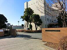 中学校水戸市立緑岡中学校まで770m