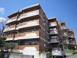 愛知県日進市赤池5丁目の賃貸マンションの外観