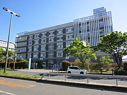 [一戸建] 大阪府泉佐野市新安松3丁目 の賃貸【/】の外観