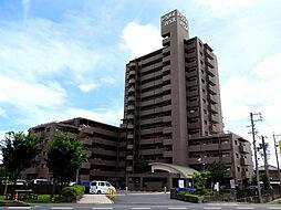 弥富市前ケ須町午新田