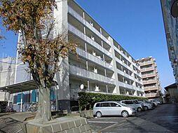 津田沼ハイムA[1階]の外観
