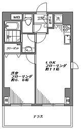 デュオ・スカーラ品川大井町[104号室]の間取り