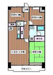 東京都板橋区西台2丁目の賃貸マンションの間取り