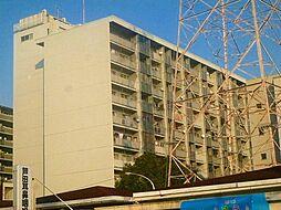 八戸ノ里グランドマンションA棟[909号室号室]の外観