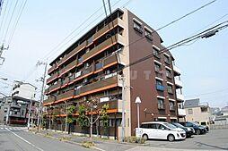 ハイツ寿見礼[6階]の外観