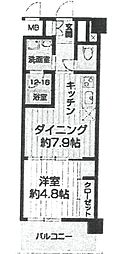 エルセレーノ武庫之荘[207号室]の間取り