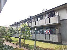 東京都三鷹市新川5丁目の賃貸アパートの外観