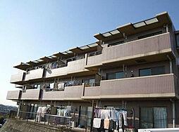 神奈川県横浜市港南区笹下2丁目の賃貸マンションの外観