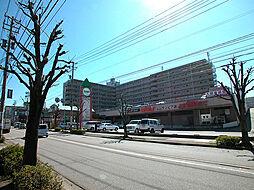 サンピア泉ヶ丘(リノベーション)[316号室]の外観