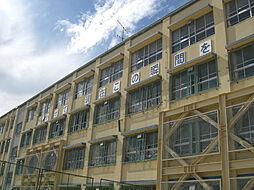 神戸市立住吉中学校 711m