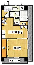 キャピタル新越谷[2階]の間取り