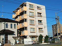 愛知県稲沢市稲島11丁目の賃貸マンションの外観