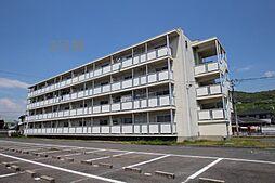 ビレッジハウス松崎 3号棟[202号室]の外観