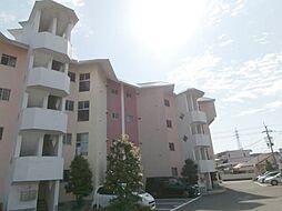 松島コーポ[2階]の外観