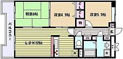 兵庫県神戸市東灘区御影1丁目の賃貸マンションの間取り